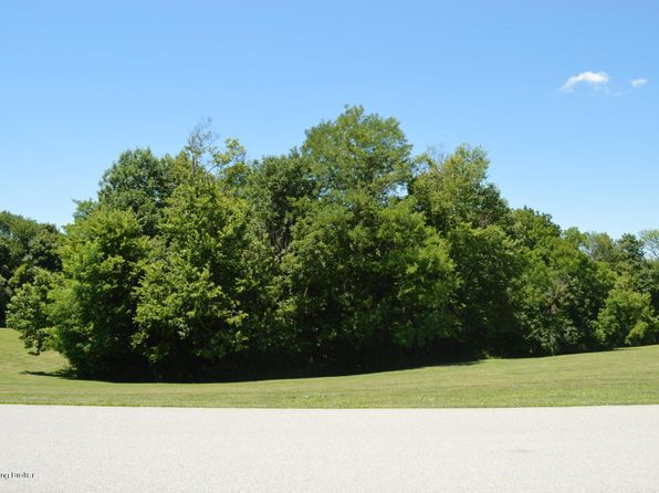 null bed null bath Vacant Land at 19 Flint Ridge Rd Shelbyville, KY, 40065 is for sale at 80k - google static map