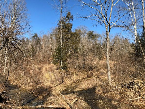 null bed null bath Vacant Land at 9 Shotgun Holw Frenchburg, KY, 40322 is for sale at 175k - 1 of 3