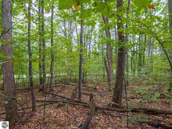 null bed null bath Vacant Land at 000-UNIT 13 Mountainwoods Dr Thompsonville, MI, 49683 is for sale at 50k - 1 of 25