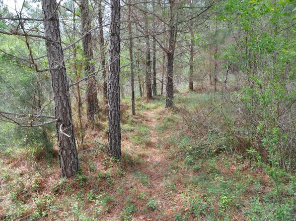 null bed null bath Vacant Land at  Clements Rd Shannon, GA, 30161 is for sale at 394k - 1 of 52