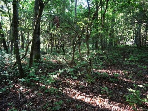 null bed null bath Vacant Land at  Tbd Brevard, NC, 28712 is for sale at 44k - google static map