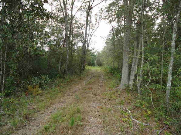 null bed null bath Vacant Land at 00 Aucilla Hwy Monticello, FL, 32344 is for sale at 44k - 1 of 2