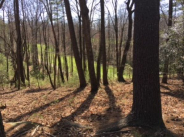 null bed null bath Vacant Land at 00 Greenstreet Dr Traphill, NC, 28685 is for sale at 26k - 1 of 2
