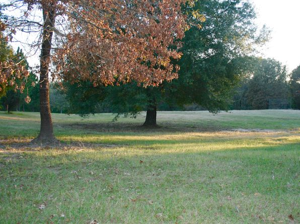null bed null bath Vacant Land at CR 2175 Whitehouse, TX, 75791 is for sale at 136k - 1 of 15