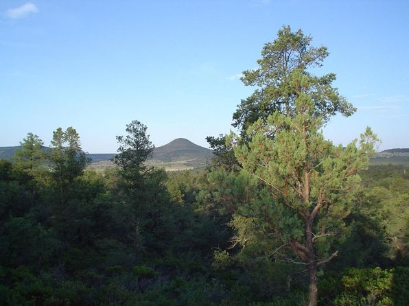 null bed null bath Vacant Land at 474 N IKE CLARK PKWY Young, AZ, 85554 is for sale at 90k - 1 of 17