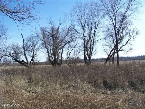 null bed null bath Vacant Land at 46809 270th St Brooten, MN, 56316 is for sale at 29k - google static map