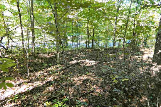 null bed null bath Vacant Land at 0 Pine Ridge Rd Dandridge, TN, 37725 is for sale at 40k - google static map