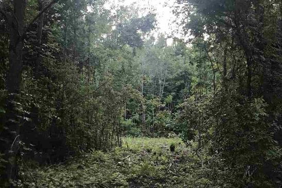 null bed null bath Vacant Land at 01 Kelley Rd Trinity, AL, 35673 is for sale at 15k - google static map