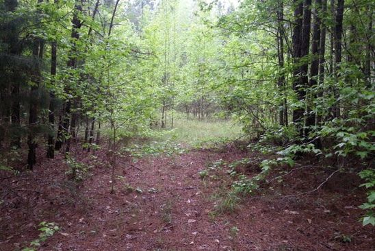 null bed null bath Vacant Land at  SALEM RD PINE MOUNTAIN, GA, 31822 is for sale at 82k - google static map