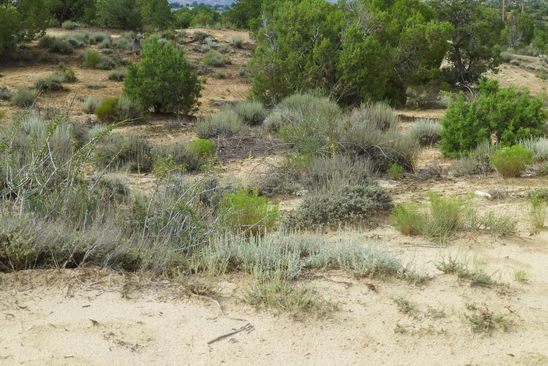 null bed null bath Vacant Land at  Xxx Rd Farmington, NM, 87401 is for sale at 121k - google static map