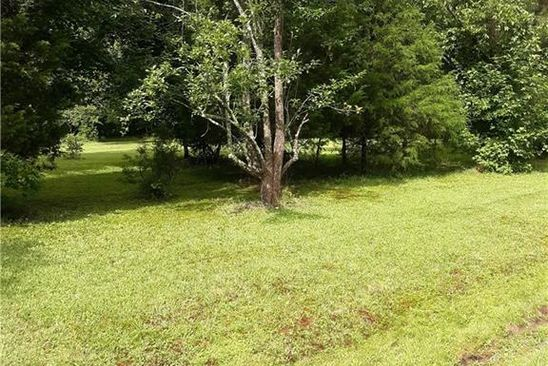 null bed null bath Vacant Land at 8+ACR Martin Johnson Rd Chesapeake, VA, 23323 is for sale at 300k - google static map