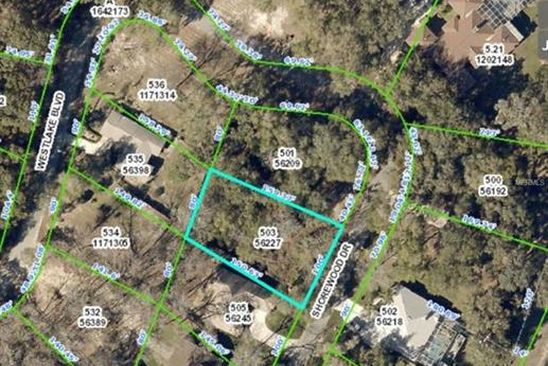 null bed null bath Vacant Land at 5143 Shorewood Dr Dade City, FL, 33523 is for sale at 10k - google static map