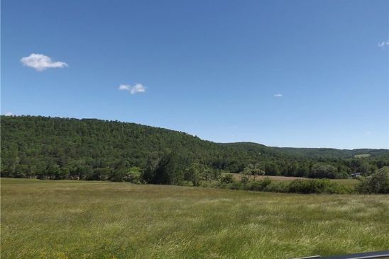 0 bed null bath Vacant Land at 00 Murray Hill Rd Colden, NY, 14033 is for sale at 450k - google static map