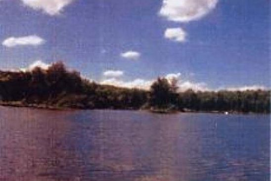 null bed null bath Vacant Land at  Lot 7 Ottawa Ln Land O' Lakes, WI, 54540 is for sale at 80k - google static map