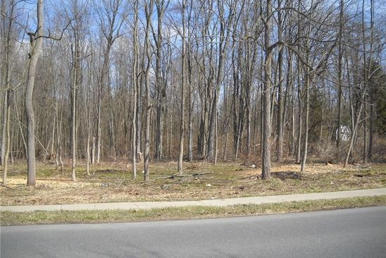 null bed null bath Vacant Land at 83 E Oneida St Baldwinsville, NY, 13027 is for sale at 30k - google static map
