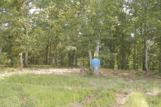 0 bed null bath Vacant Land at  Lot # 38 Brushy Ests Arley, AL, 35541 is for sale at 145k - google static map