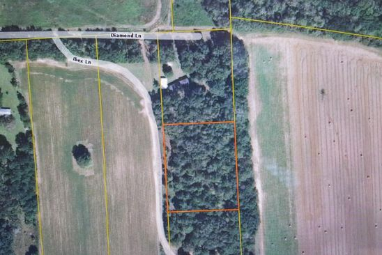 null bed null bath Vacant Land at 0000 Ibex Ln Marianna, FL, 32446 is for sale at 18k - google static map