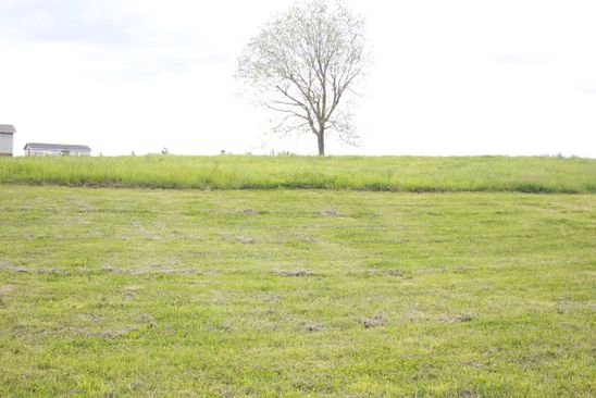 null bed null bath Vacant Land at  Lot 2 Old Kentucky Rd Walling, TN, 38587 is for sale at 10k - google static map