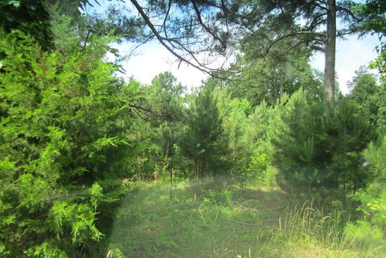 null bed null bath Vacant Land at 0 Lara Rd Alphonso, VA, 22503 is for sale at 17k - google static map