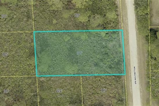 null bed null bath Vacant Land at 2103 WELLINGTON AVE ALVA, FL, 33920 is for sale at 17k - google static map