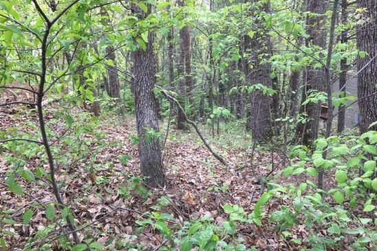 null bed null bath Vacant Land at 0 Custis Ave SW Roanoke, VA, 24018 is for sale at 9k - google static map