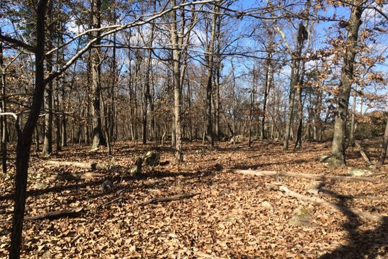 null bed null bath Vacant Land at 24.3 Horseshoe Lake Rd Bethel, NY, 12720 is for sale at 32k - google static map