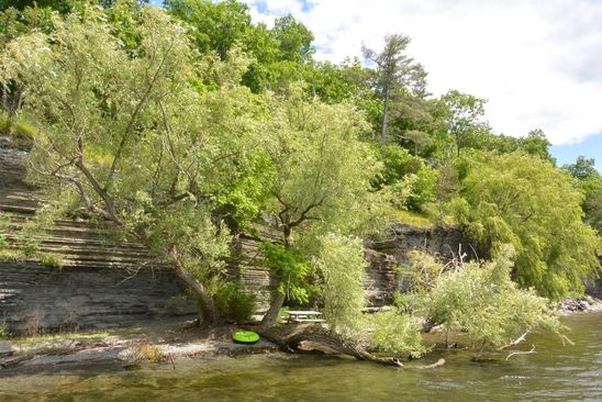 null bed null bath Vacant Land at 4335 State Route 414 -Parcel Burdett, NY, 14818 is for sale at 160k - google static map
