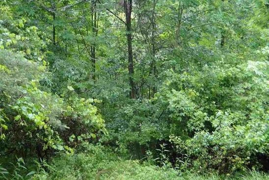 null bed null bath Vacant Land at  Lot # 1 Stanton Rd Coeymans Hollow, NY, 12046 is for sale at 90k - google static map