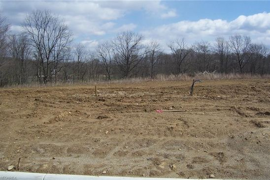 null bed null bath Vacant Land at 190 Hawkins Ln Columbiana, OH, 44408 is for sale at 32k - google static map