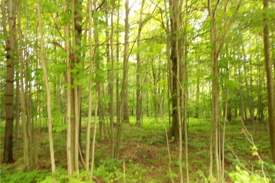 null bed null bath Vacant Land at 0 Partridge Rd Colden, NY, 14033 is for sale at 19k - google static map