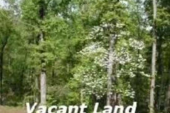 null bed null bath Vacant Land at  Tract 2 Linda Mountain View, AR, 72560 is for sale at 123k - google static map