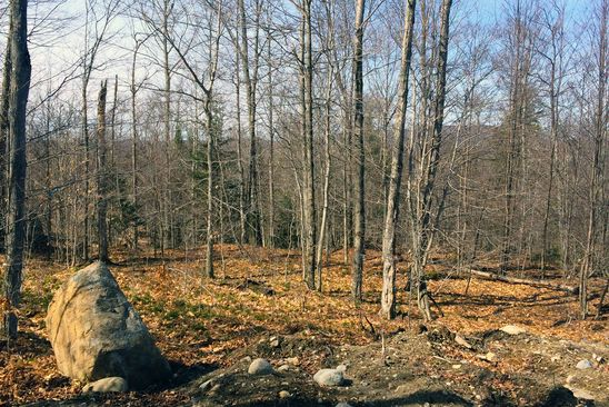 null bed null bath Vacant Land at  1 Bend Lane Tupper Lake, NY, 12986 is for sale at 60k - google static map