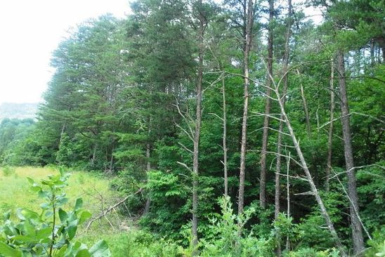 null bed null bath Vacant Land at 0 Flatwoods Rd Elliston, VA, 24087 is for sale at 30k - google static map