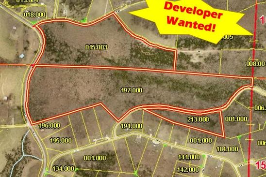 null bed null bath Vacant Land at  Tbd State Hwy 173 & Mulberry Dr Cape Fair, MO, 65624 is for sale at 286k - google static map