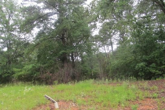 null bed null bath Vacant Land at 8 Pintail Dr Cataula, GA, 31804 is for sale at 55k - google static map
