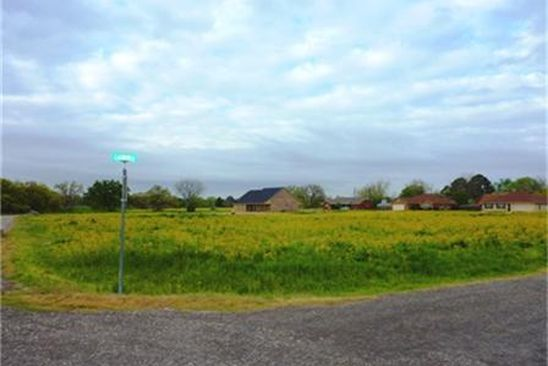 null bed null bath Vacant Land at  Lot 15 Nicholas Ln Teague, TX, 75860 is for sale at 8k - google static map