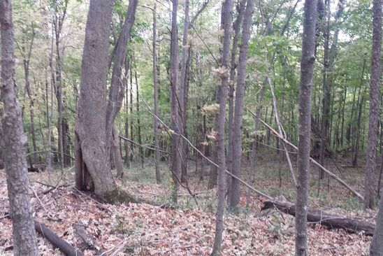 null bed null bath Vacant Land at 0 Campbell Rd Hermon, NY, 13652 is for sale at 40k - google static map