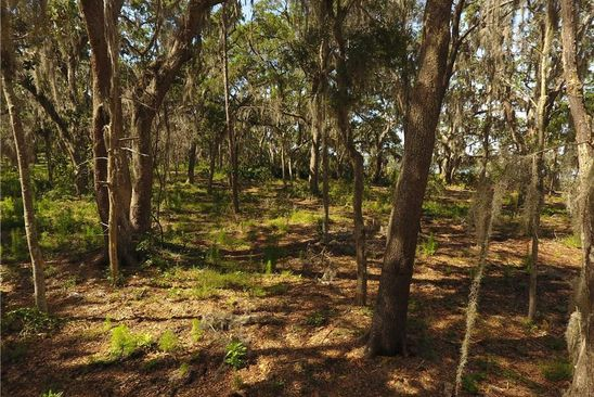 null bed null bath Vacant Land at 46 Cord Grass Ct Fernandina Beach, FL, 32034 is for sale at 482k - google static map