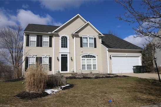 5 bed 4 bath Single Family at 10207 AUTUMN CIR STREETSBORO, OH, 44241 is for sale at 325k - google static map