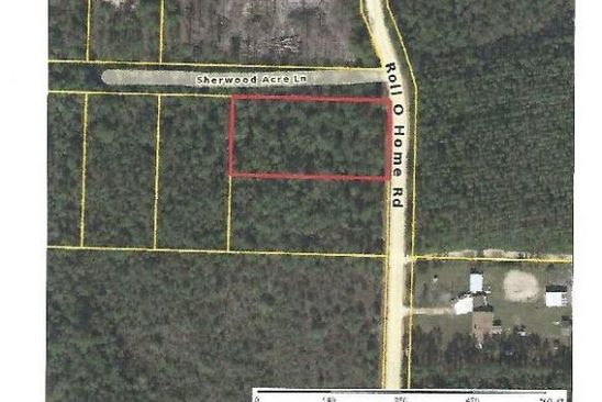 null bed null bath Vacant Land at 000000 Rollohome Rd Fountain, FL, 32438 is for sale at 8k - google static map