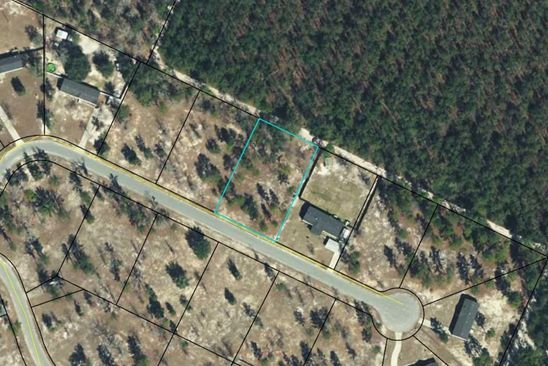 null bed null bath Vacant Land at  Taylors Creek Road Rd Ludowici, GA, 31316 is for sale at 23k - google static map