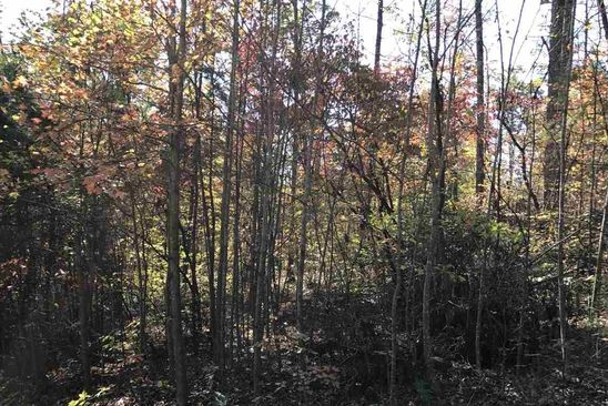 null bed null bath Vacant Land at S Hwy 340 Newport, TN, 37727 is for sale at 16k - google static map