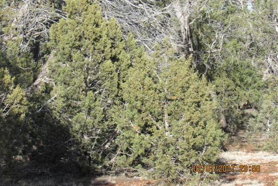 null bed null bath Vacant Land at 164 W Muddy Boot Trl Ash Fork, AZ, 86320 is for sale at 19k - google static map