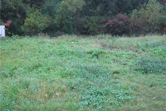 0 bed null bath Vacant Land at 1335 FOOTE RD CLYDE, NY, 14433 is for sale at 13k - google static map