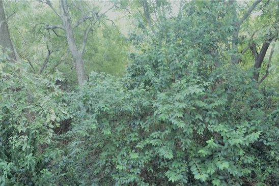 null bed null bath Vacant Land at 144 S Greenbriar Rd Whitney, TX, 76692 is for sale at 25k - google static map