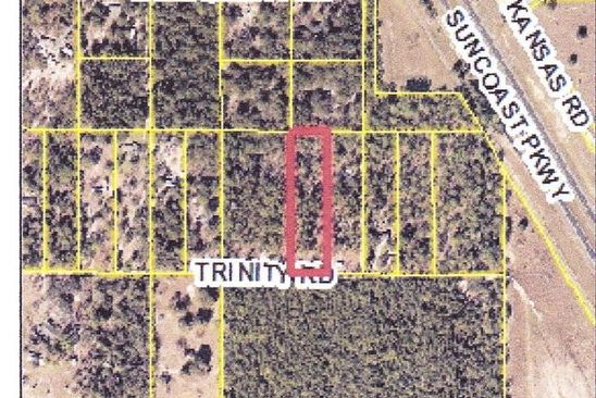 null bed null bath Vacant Land at 0000 Trinity Rd Brooksville, FL, 34614 is for sale at 36k - google static map
