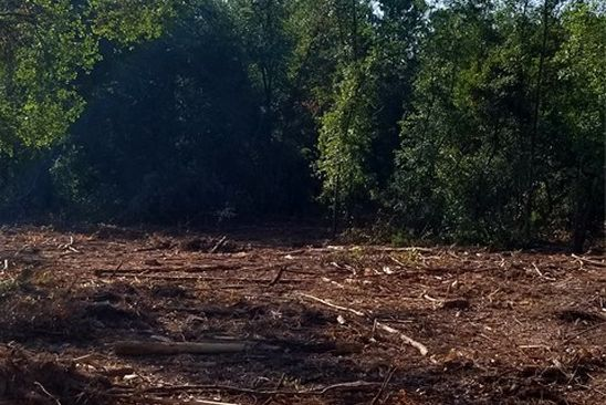 null bed null bath Vacant Land at  Adams Ave New Ellenton, SC, 29809 is for sale at 5k - google static map