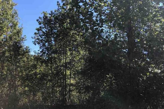 null bed null bath Vacant Land at 214 Audubon Acres Dr Easley, SC, 29642 is for sale at 56k - google static map