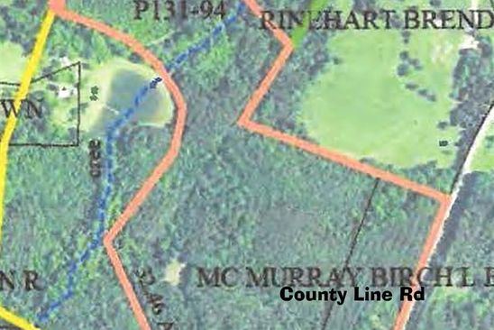 null bed null bath Vacant Land at 000 Tanner Rd Rutherfordton, NC, 28139 is for sale at 375k - google static map
