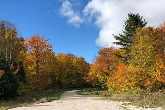 null bed null bath Vacant Land at 9.6A Dillexie Ln Northshore Blfs Manistique, MI, 49854 is for sale at 15k - google static map